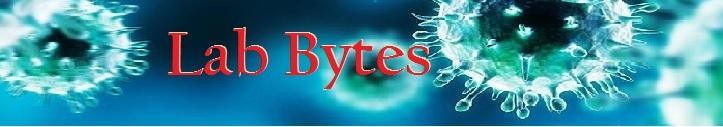 Lab Bytes